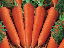 ăn quả carrot giúp mắt sáng